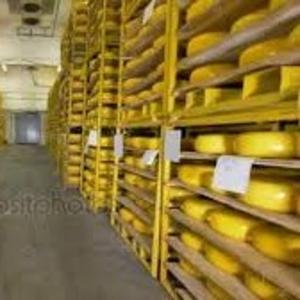Сыр твердый оптом напрямую от производителя в г. Белгород.